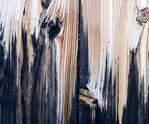 wood and art image