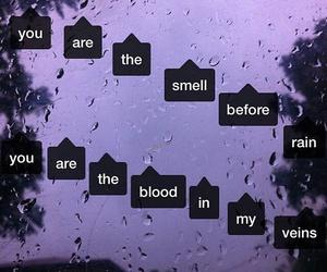 rain, blood, and love image