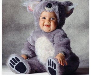 baby, Koala, and funny image