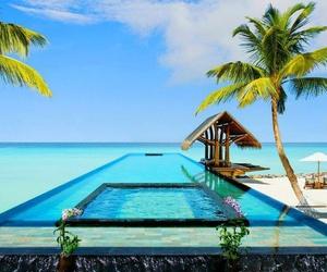 ocean, pool, and summer image