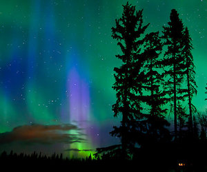 lights, nature, and northern image