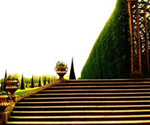 architecture, garden, and photography image