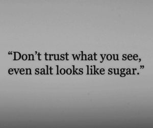 quote, trust, and sugar image