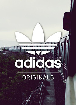 Adidas Logo Wallpaper Discovered By Blurry