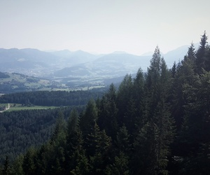 adventure, mountain, and trees image