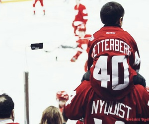 detroit red wings, fans, and hockey image