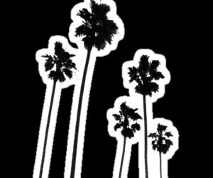 overlays, kawaii transparents, and palm+trees image