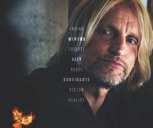 the hunger games, mockingjay, and haymitch image