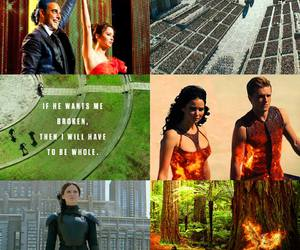 katniss, mockingjay, and the hunger games image