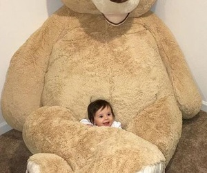 baby and bear image