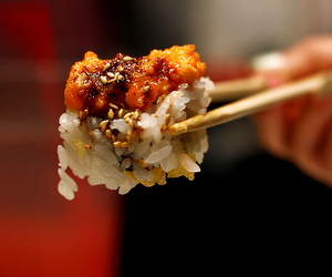 food, sushi, and photography image