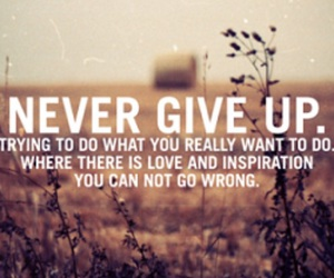 give up, giving up, and quotes image
