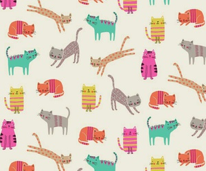 cat, background, and wallpaper image