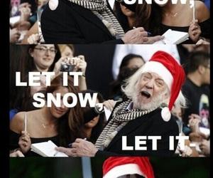 hunger games, snow, and funny image
