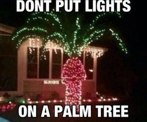 light, funny, and palm trees image