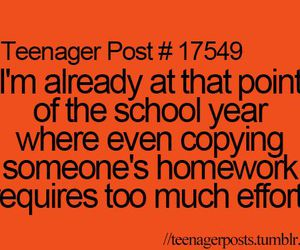 school, homework, and teenager post image