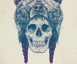bear and skull image