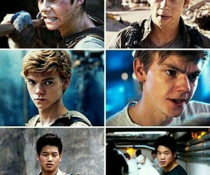 the maze runner, the scorch trials, and newt image