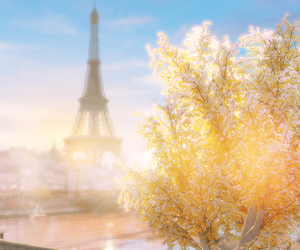 eiffel tower, scenery, and tree image