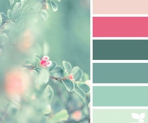 color, design, and inspiration image