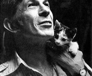 b&w, cat, and leonard nimoy image