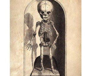 art, print, and skeleton image