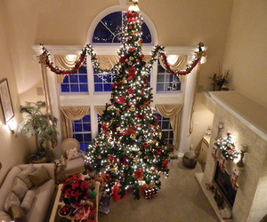 christmas, lights, and christmas tree image