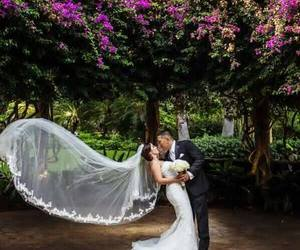 couple, dress, and veil image