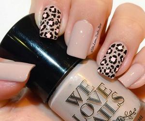 nails and we love nails image
