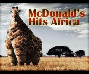 africa, McDonalds, and fat image