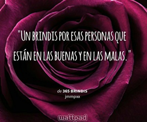 frases and fraces image