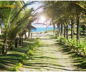 beach, brazil, and salvador image
