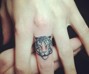 finger, hand, and lion image