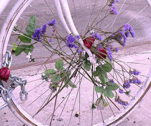 flowers, bike, and aesthetic image