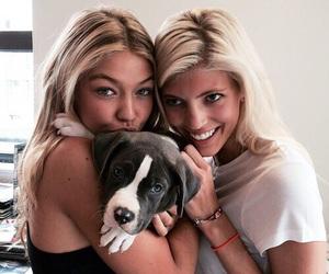 gigi hadid, dog, and model image