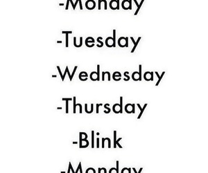weekend, funny, and monday image