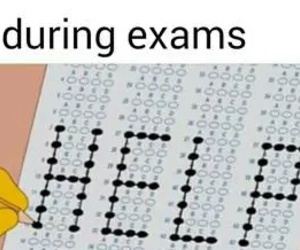 exam and funny image