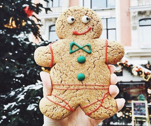 Cookies, winter, and magic image
