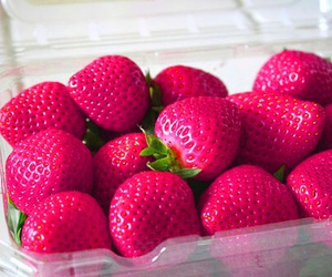 pink, strawberry, and tumblr image