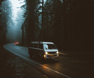 forest, travel, and adventure image