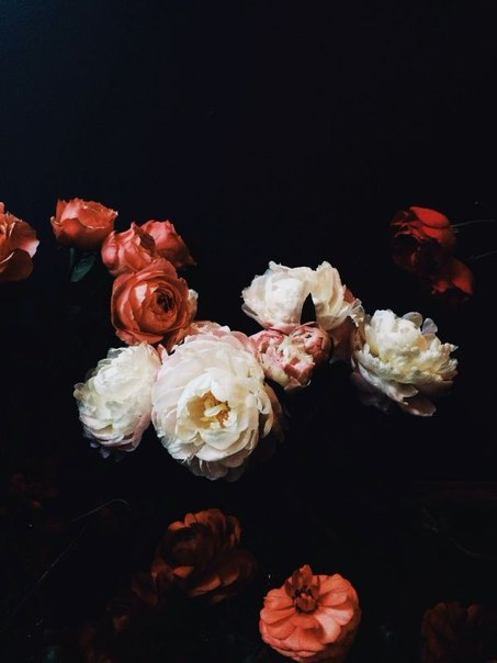 grunge, wallpaper, and flowers image