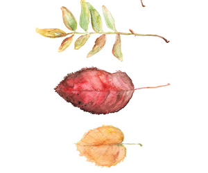 autumn, draw, and fall image