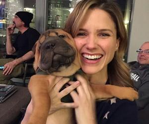 dog, smile, and sophia bush image