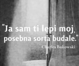lol citaci and balkan budala image