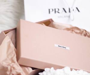 fashion, Prada, and luxury image
