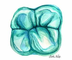 dentist image