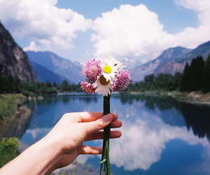 flowers, lake, and nature image