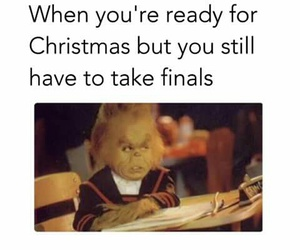 christmas, funny, and exams image
