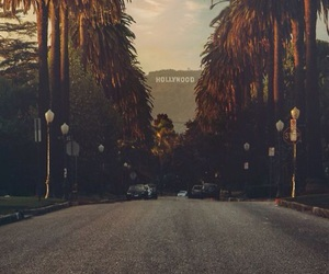 street, pinterest, and palm trees image