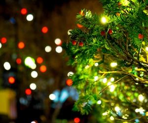cheer, christmas tree, and december image